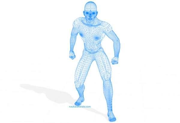 Езикът на мъжкото тяло